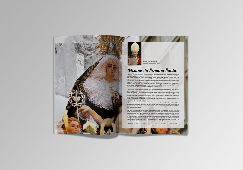 ssf-revistas3